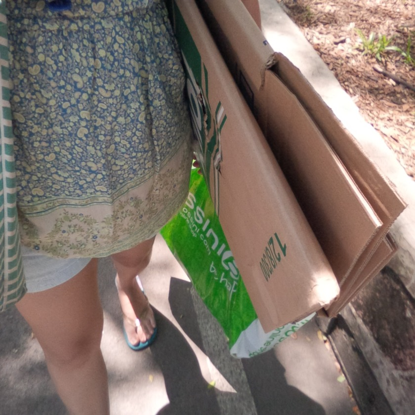 Carton-Boxes.jpg