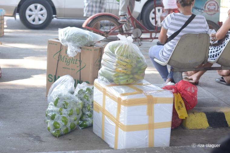 Cargo Tuguegarao to Palanan